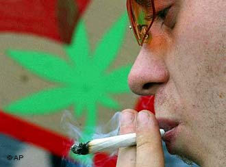 Молодые немцы предпочитают марихуану