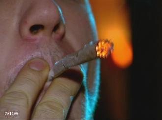 Иностранцам хотят запретить курить траву в Нидерландах
