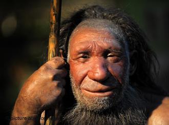 Первые повара в истории человечества были Homo erectus